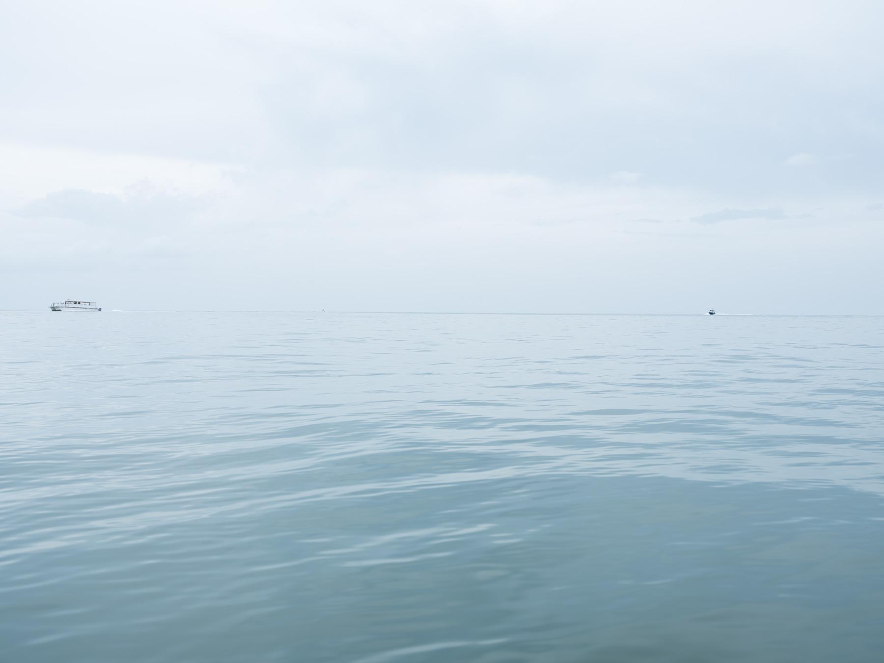 FUJI GFX50s, shark, ocean,